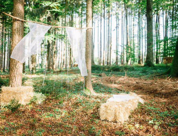 Traubogen Waldhochzeit freie Trauung