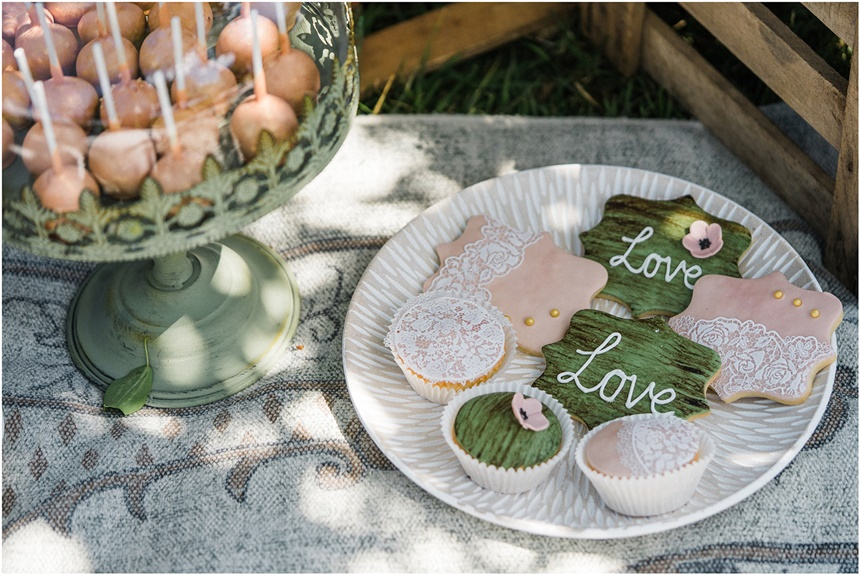 Surprise Wedding Picknick im Grünen Love and Cake Pops