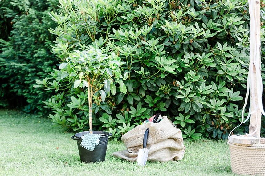 nachhaltige DIY Gartenhochzeit Hochzeitsritual Baum freie Trauung