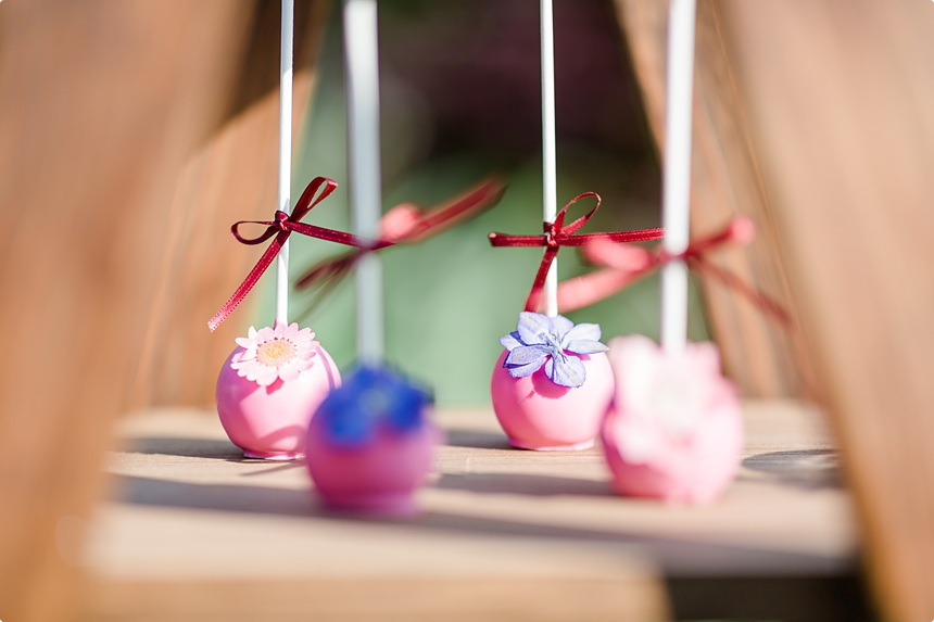 nachhaltige DIY Gartenhochzeit Cake Pops pink